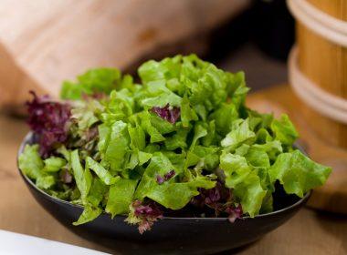 Kleiner grüner Salat